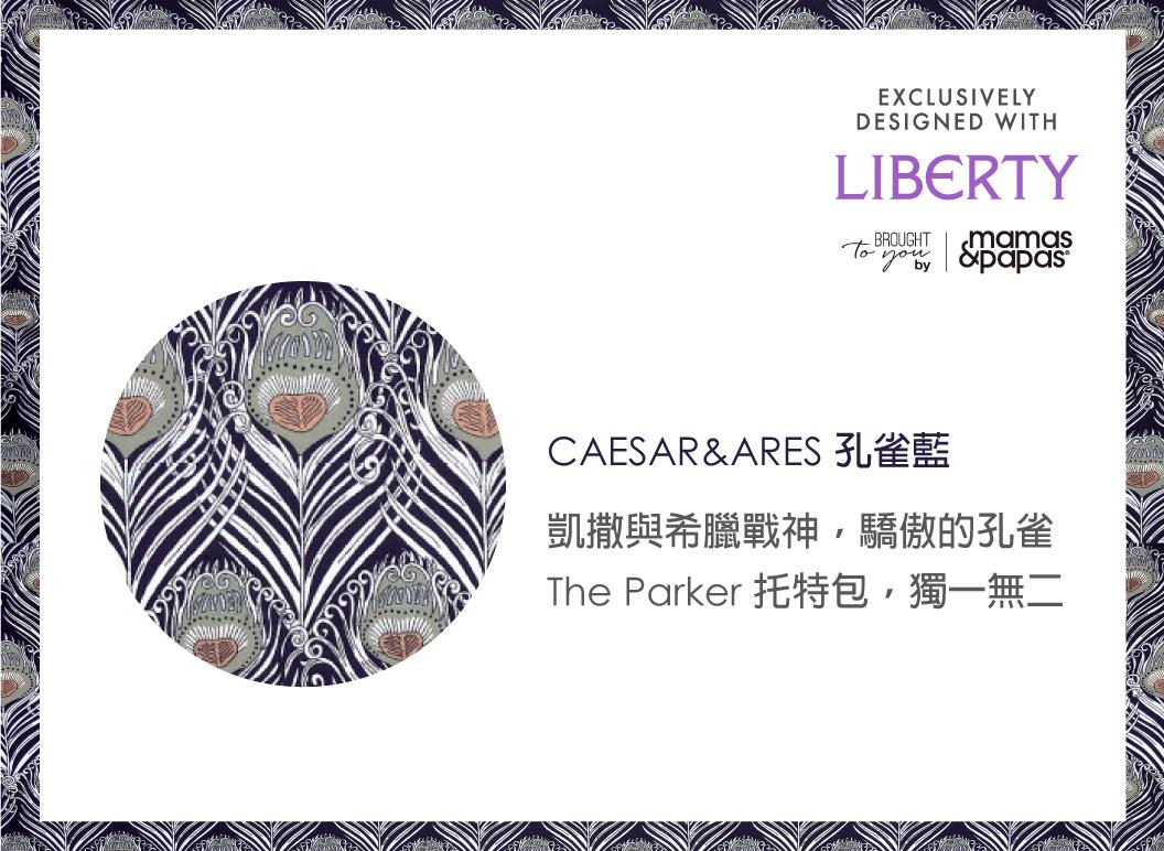 libertybag3